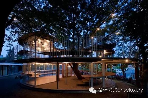137 HAWA-Rumah Pohon, Tidur di Bawah Langit Berbintang-2