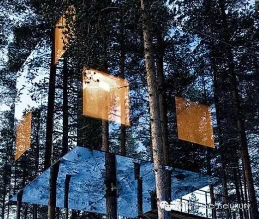 137 HAWA-Rumah Pohon, Tidur di Bawah Langit Berbintang-8