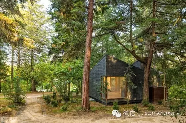 137 HAWA-Rumah Pohon, Tidur di Bawah Langit Berbintang-9