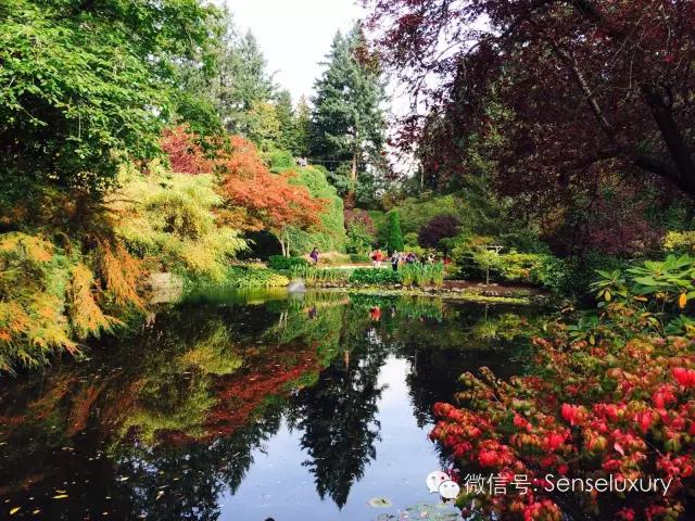 147 HAWA-Lihatlah Taman yang Indah Ini-19