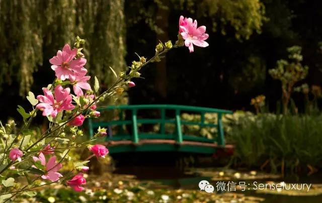 147 HAWA-Lihatlah Taman yang Indah Ini-24
