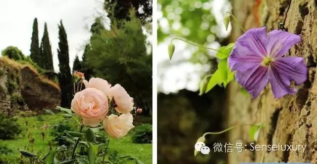 147 HAWA-Lihatlah Taman yang Indah Ini-4