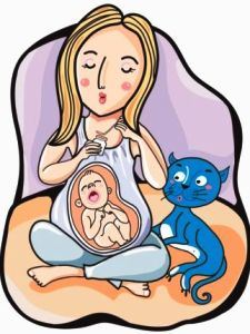 153 HAWA-Tanya Jawab Seputar Toksoplasma, Menstruasi Dan Kehamilan Bersama Dr. Mintareja Teguh, dr., SpOG(K)-2