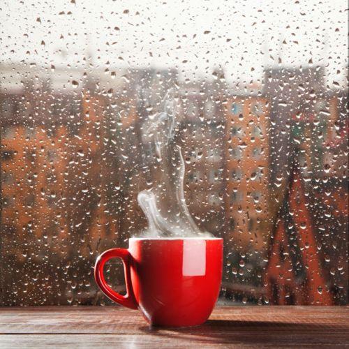281 HAWA-Waspada Kenaikan Berat Badan Di Musim Hujan-5
