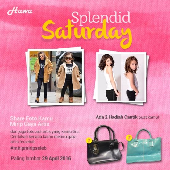 Splendid-Saturday (2)