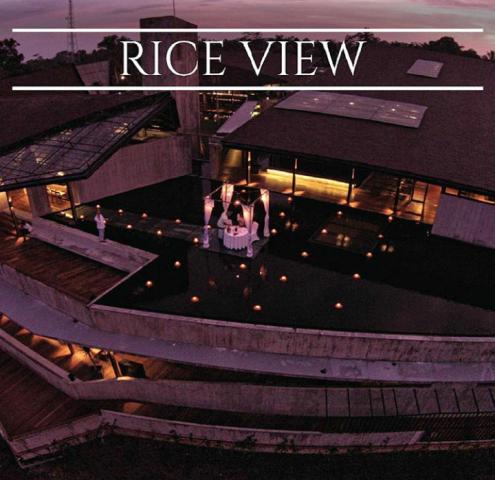 654 HAWA-Nikmati Makan Malam Romantis di Atas Air Hanya di Rice View-1