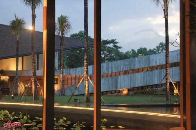 654 HAWA-Nikmati Makan Malam Romantis di Atas Air Hanya di Rice View-2