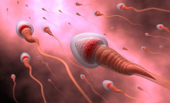 doktersehat-cek-sperma-696x421.jpg